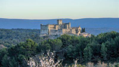 Chateau-du-barroux-distillerie-mont-ventoux-vaucluse-provence-promontoire-seminaires-de-caractere