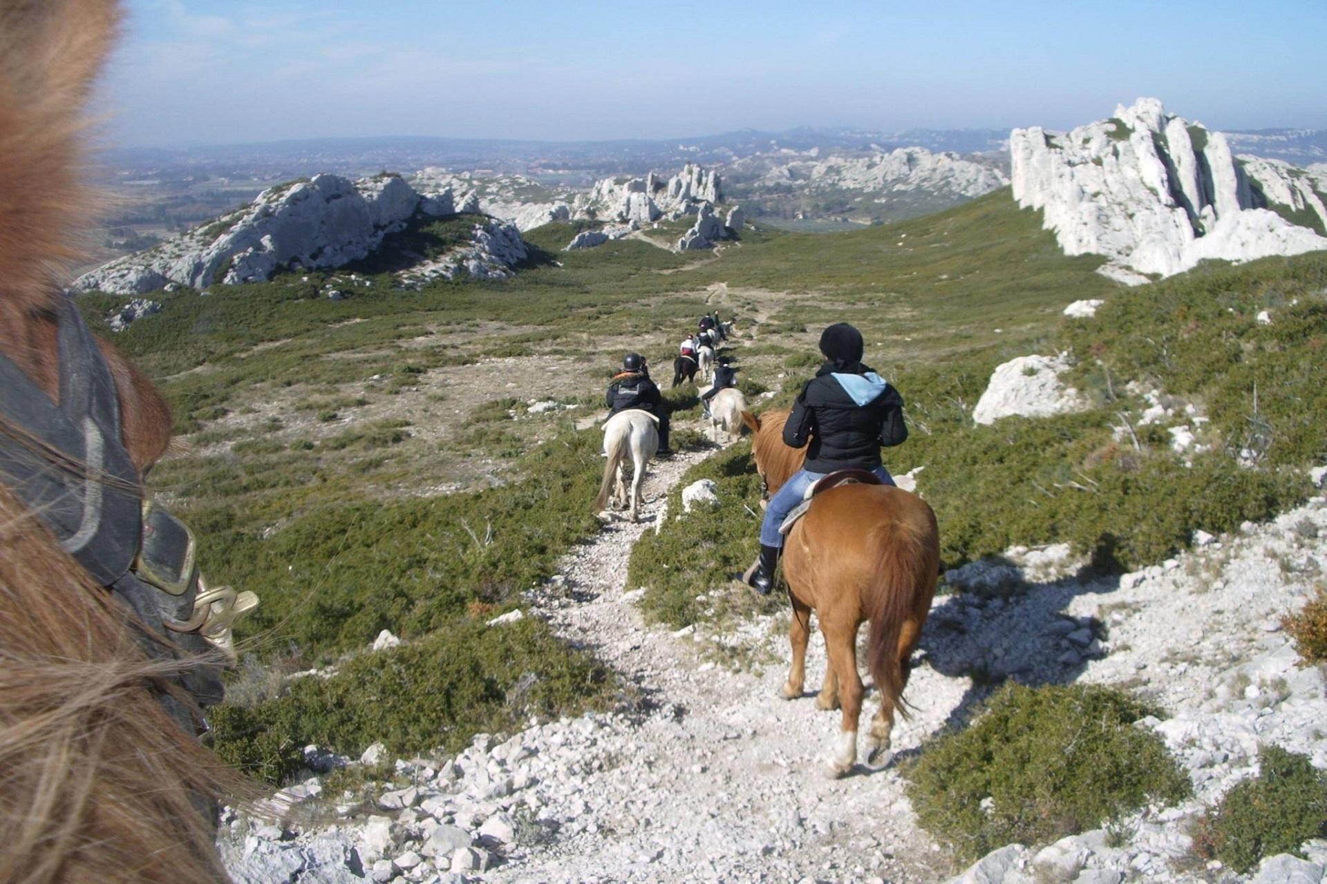 bastide-eygalieres-alpilles-provence-sud-seminaires-incentive-chevaux