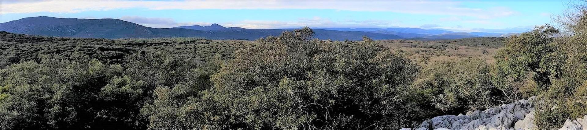 domaine-du-mas-de-coulet-herault-montpellier-cevennes-vue-panoramique-seminaires-de-caractere
