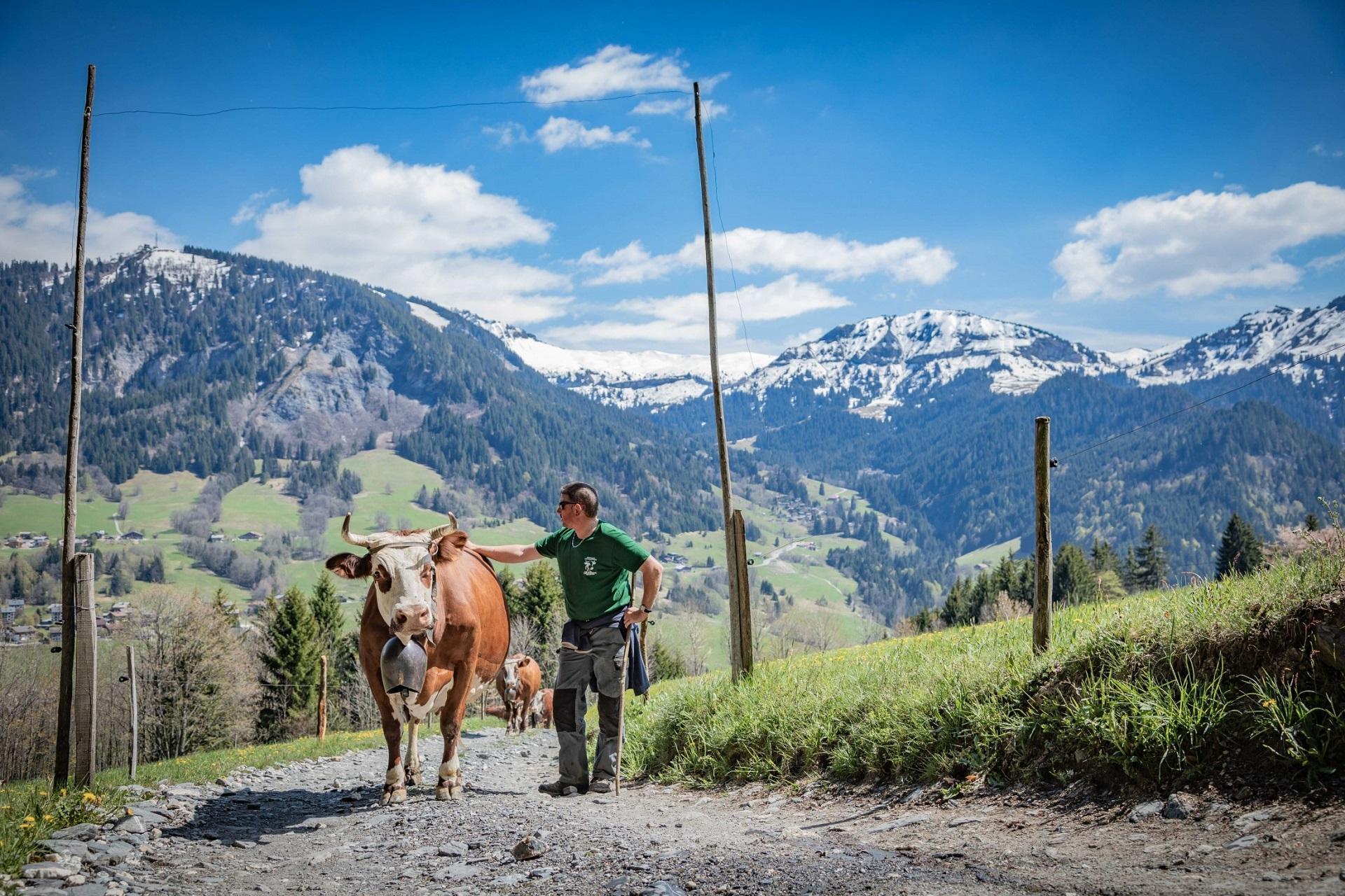 l'arboisie-megeve-incentive-ski-montagne-alpes-nature-101 seminaires-de-caractere