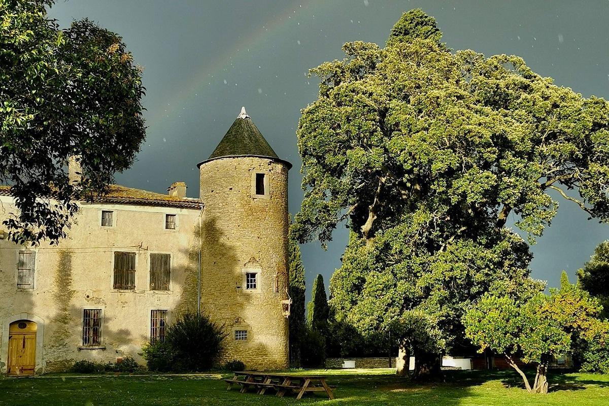 les-cabanes-dans-les-bois-carcassonne-occitanie-seminaires-insolites-domaine