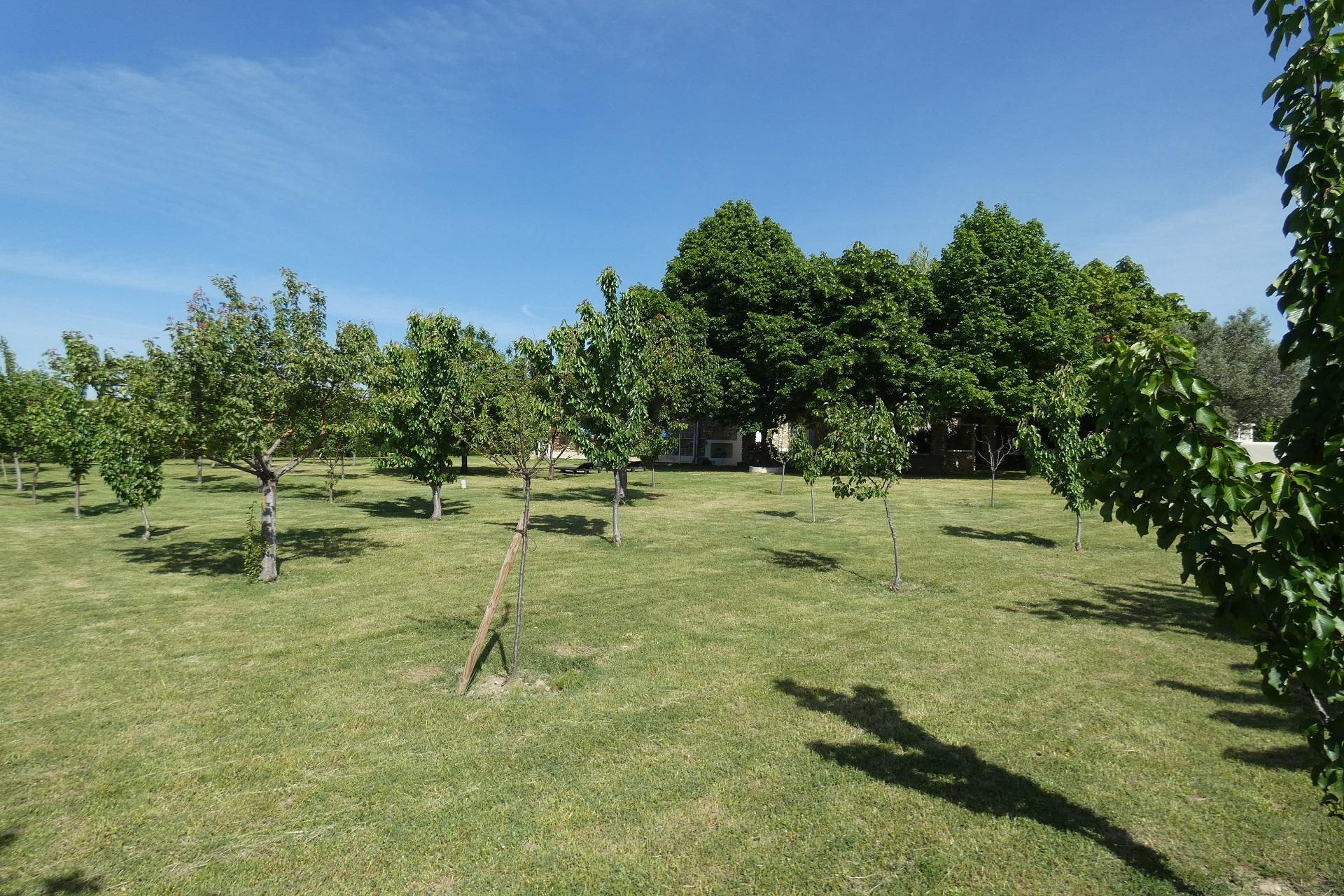mas-du-sillot-grignan-vaucluse-drome-jardin-seminaire-de-caractere