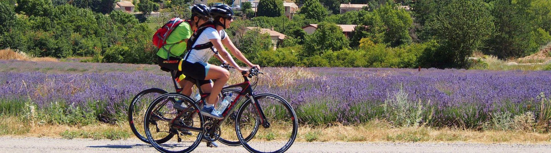 ride-and-more-travel-mont-ventoux-provence-luberon-animations