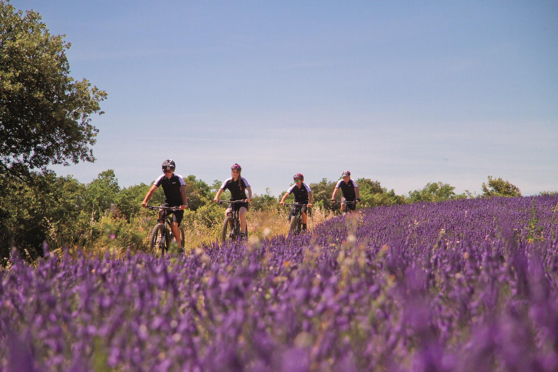 ride-and-more-travel-mont-ventoux-provence-luberon-cycling-provence