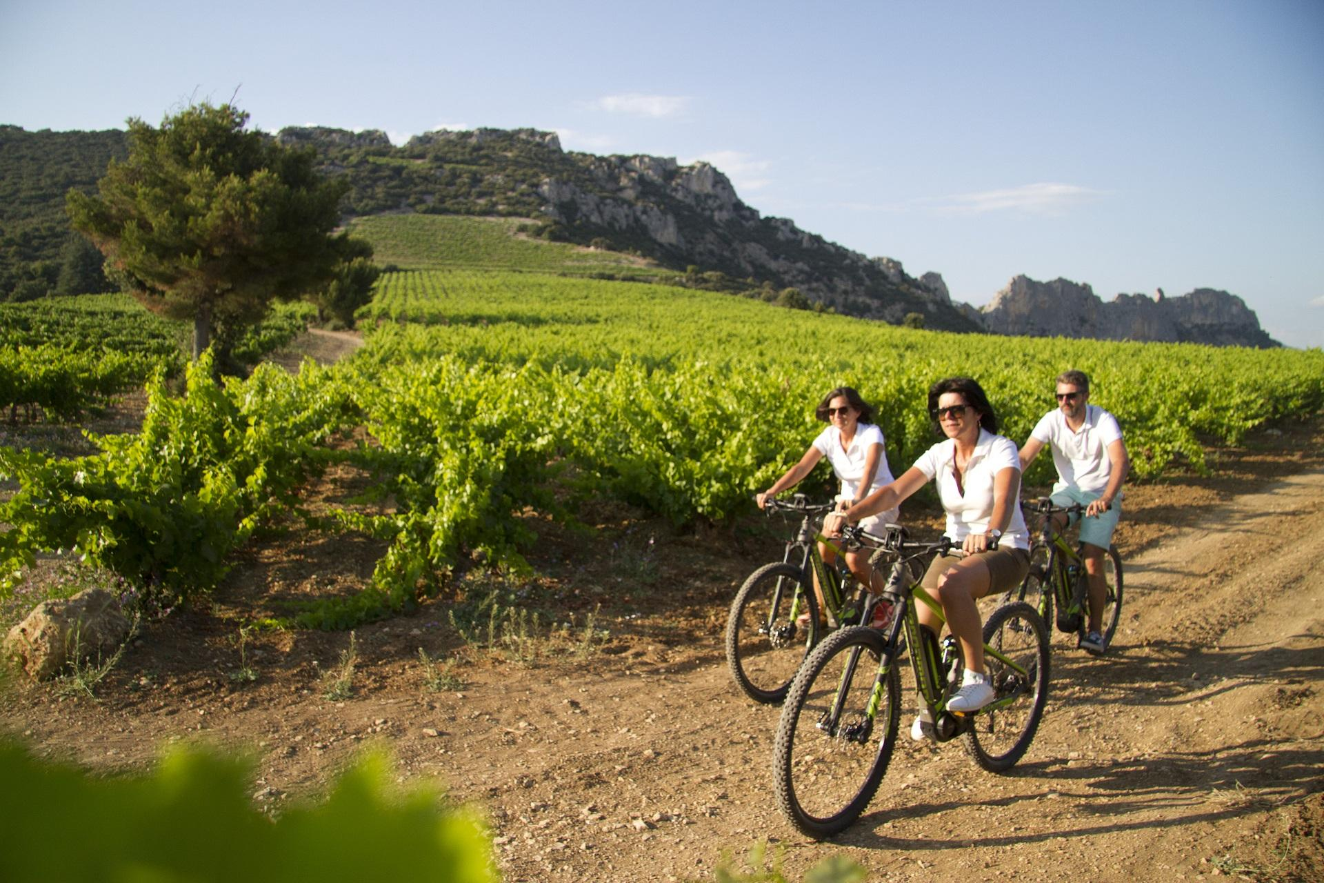 ride-and-more-travel-mont-ventoux-provence-luberon-cycling-vignobles