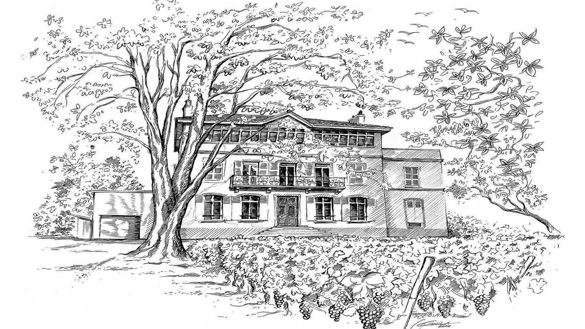 wine-school-by-fabrice-sommier-oenologie-degustation-macon-bourgogne